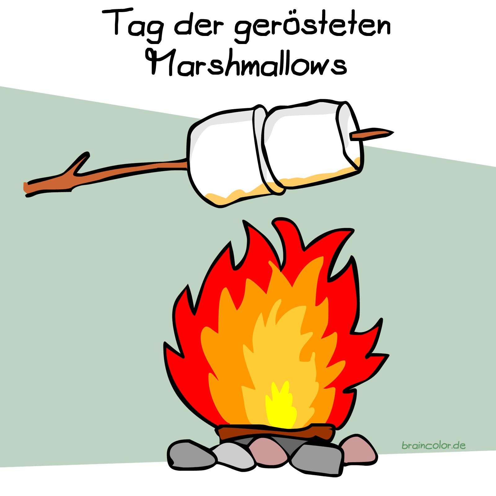 Marshmellow