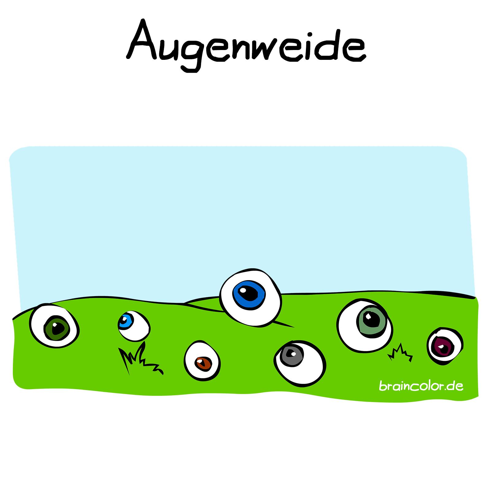 Augenweide