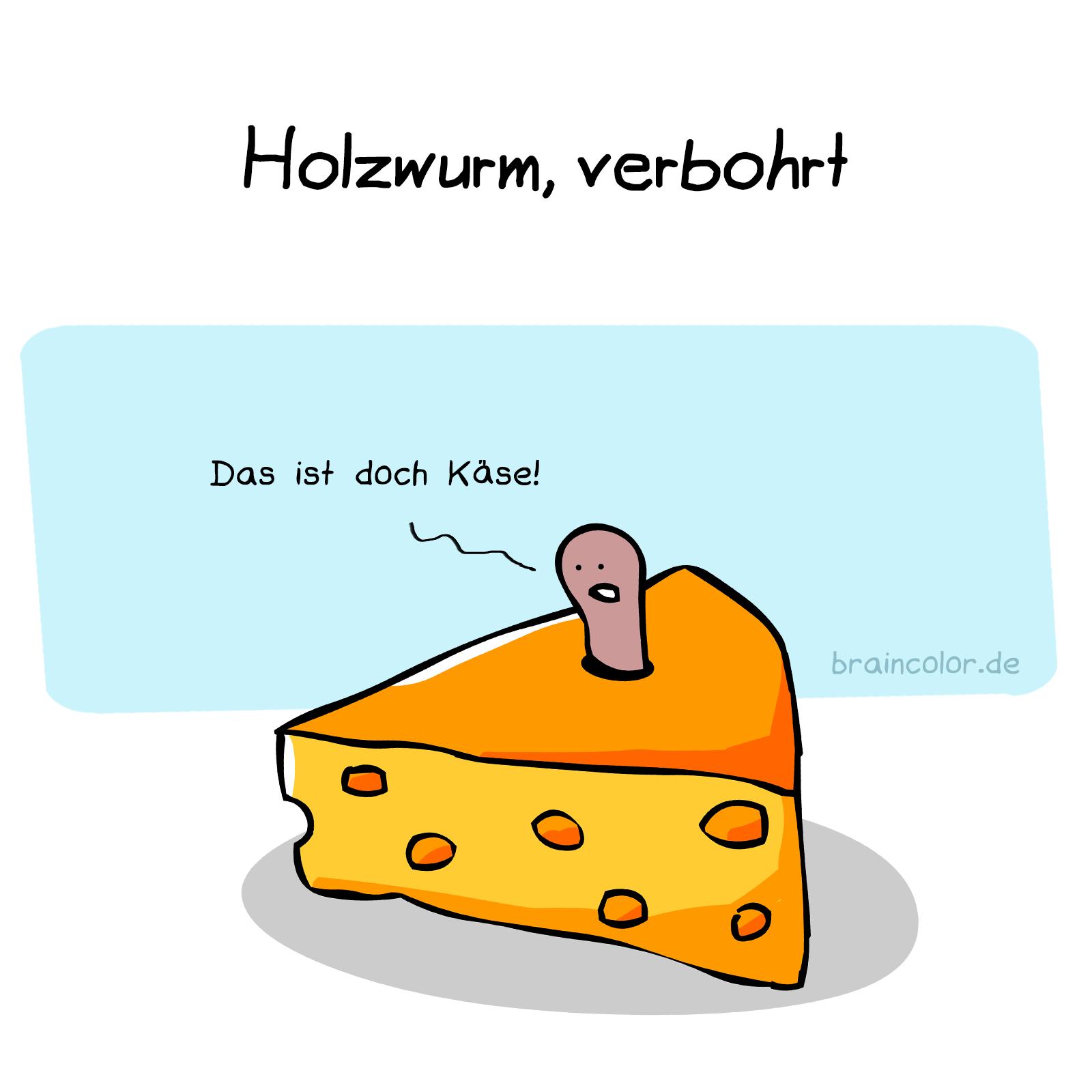 holzwurm-verbohrt